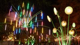 Plant sculptures made of multi-coloured lights
