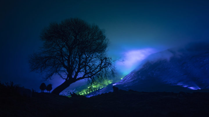 A shadow of the tree and in the backgroud is an emerald and blue light roof over the Connemara mountains valley